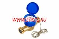 ОСВХ-32 НЕПТУН ДГ класса С счетчик холодной воды