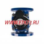 СТВХ-100 УК (300мм) ДГ счетчик воды