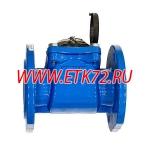 ВСХН 65 Счетчик холодной воды (Россия)