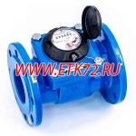ВСХН 80 Счетчик холодной воды (Россия)
