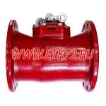 ВСТН 250 Счетчик турбинный
