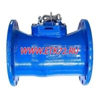 ВСХНд 250 Счетчик турбинный